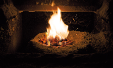 Home heating or co-firing with biomass pellets
