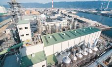 Kraft mill plant