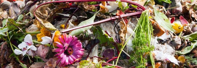 se-organic-waste-top