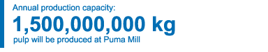 1,500,000,000 kg annual production capacity